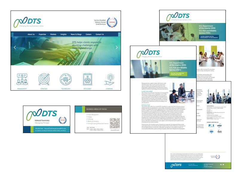 ConsultDTS Website